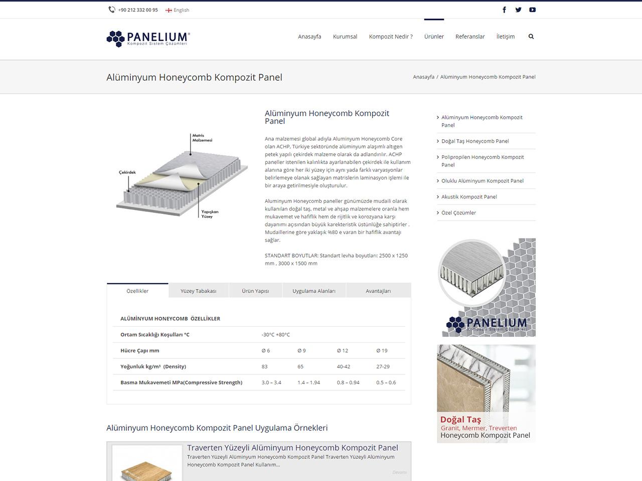panelium-sayfa-web-tasarim-2