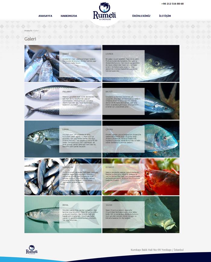 rumeli-su-urunleri-web-tasarimi-2