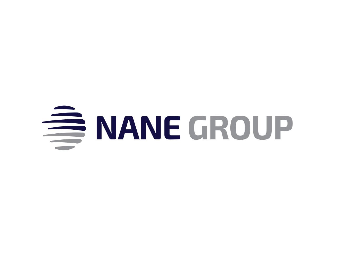 nane-group-logo-kurumsal-kimlik-tasarim-2